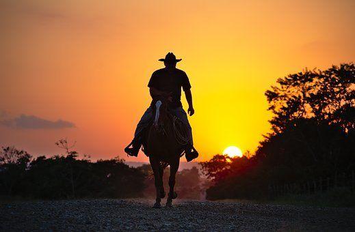 Cowboy Method Horse