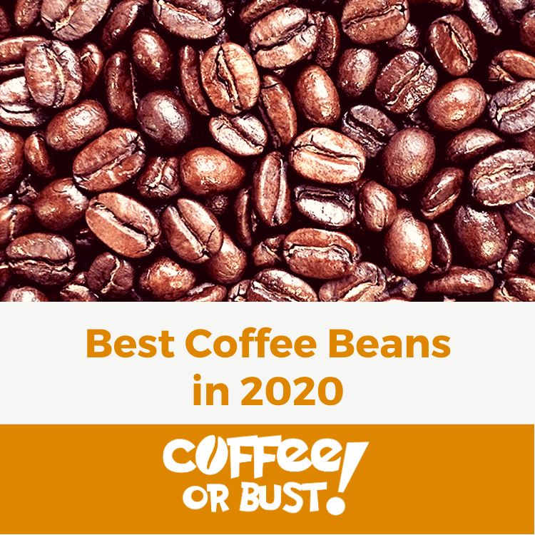 Best Coffee Beans in 2020