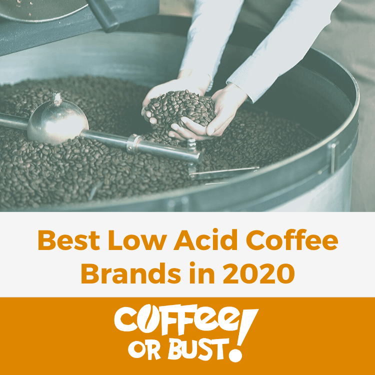 Best Low Acid Coffee Brands in 2020