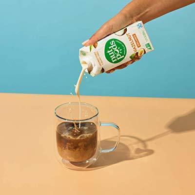 nutpods Hazelnut Dairy-Free Creamer Best Coffee Creamer