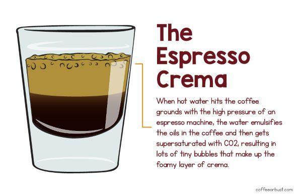 Espresso Crema CoffeeorBust